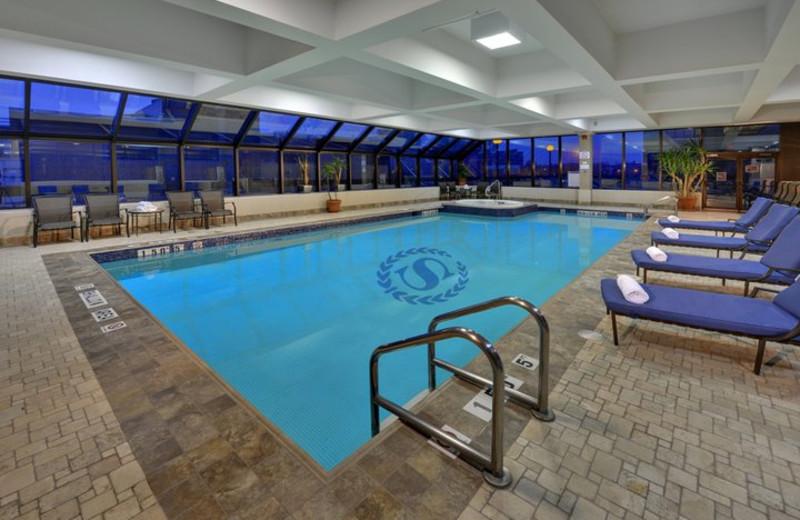 Indoor Pool at the Sheraton Hamilton Hotel