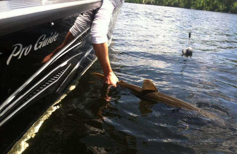 Fishing at Cliff Lake Resorts.