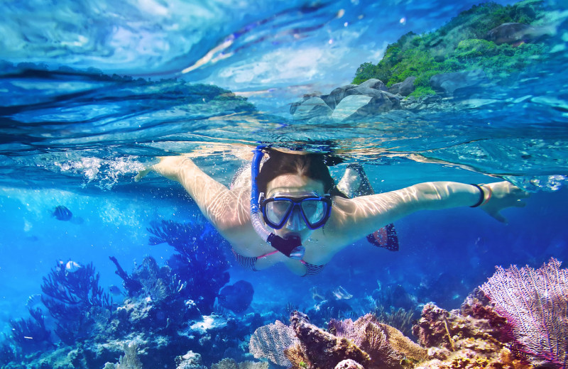 Snorkeling at Bric Vacation Rentals.