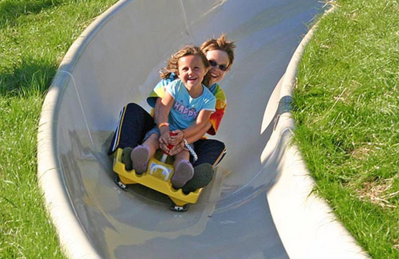 Alpine slide at Crystal Mountain Resort and Spa.