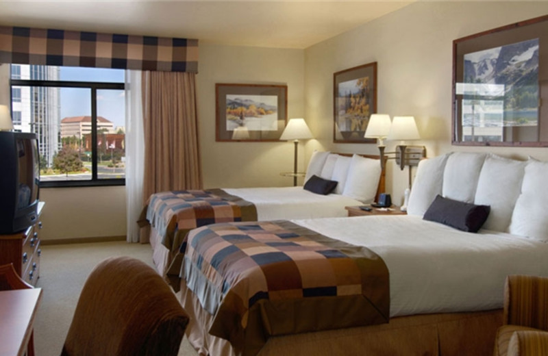 Guest Room at Wingate by Wyndham Greenwood Village/Denver Tech