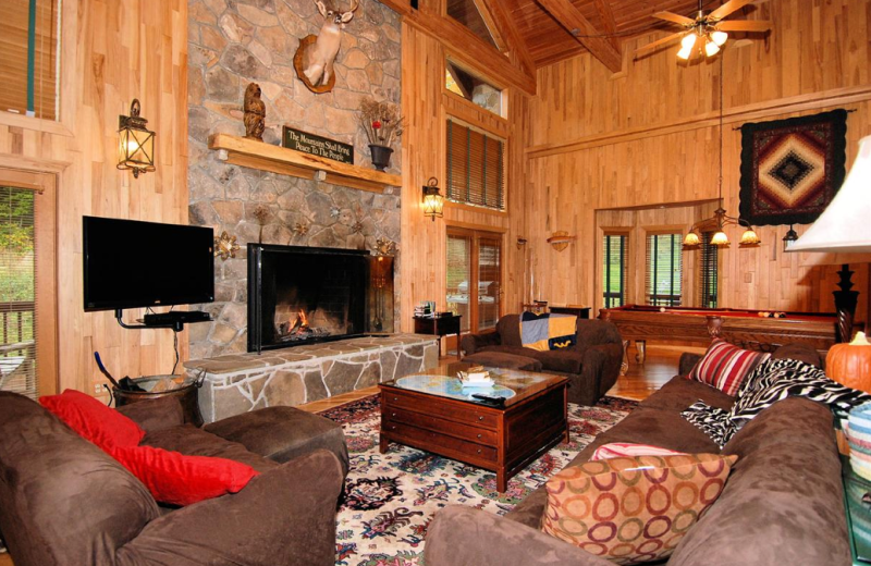 Vacation rental living room at Slope-Side Accommodation.