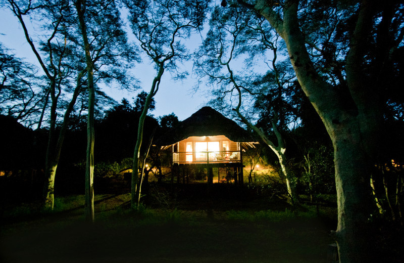 Exterior view of Zululand Tree Lodge.