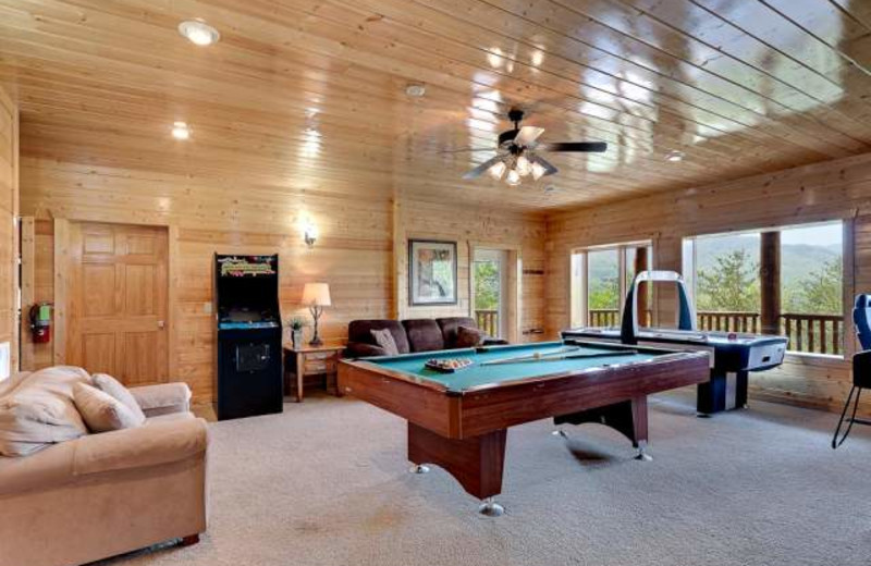 Vacation rental living room at Stony Brook Chalets.