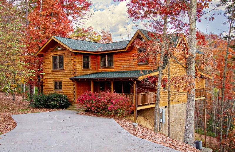 Southern Splendor cabin at Little Valley Mountain Resort
