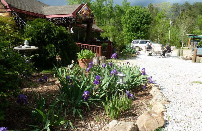 Exterior view of Mountain Rest Cabins and Campground.