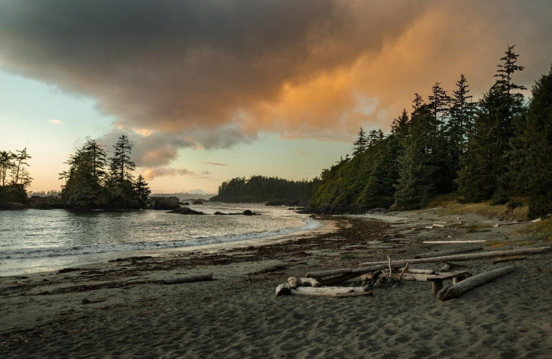 Beach at Nootka Wilderness Lodge.