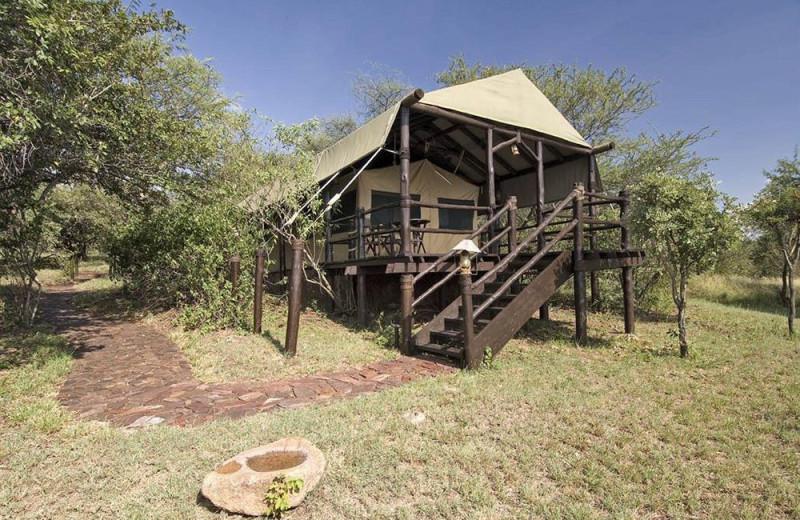 Tent at Kirawira Camp.