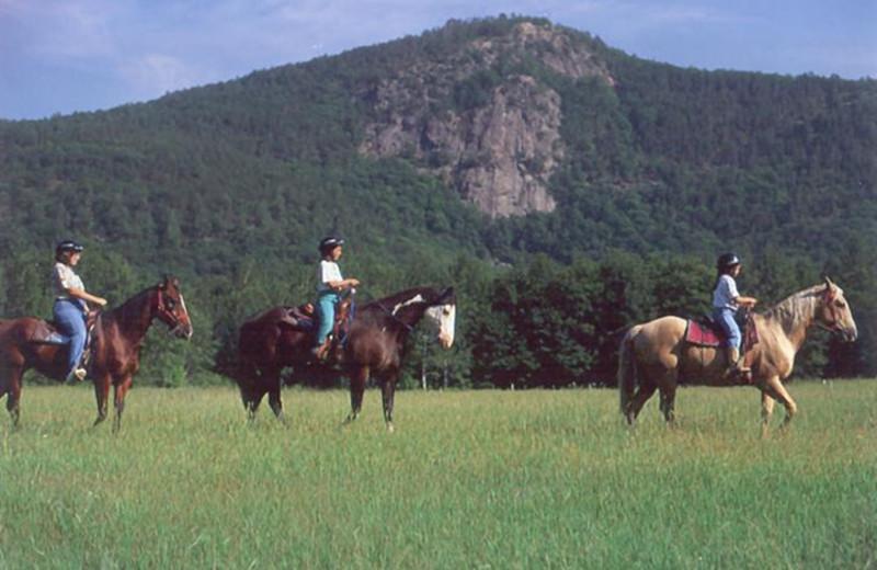Horseback riding near The New England Inn & Lodge.
