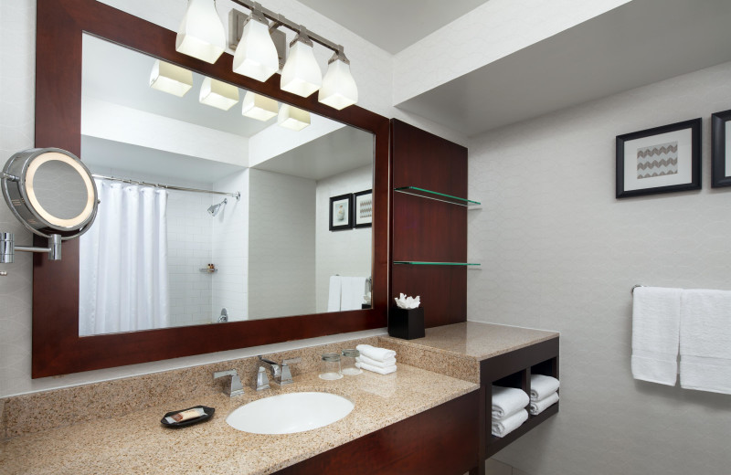 Guest bathroom at Sheraton San Jose Hotel.
