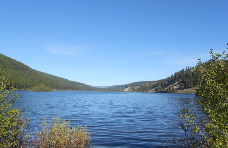 Scenic view at Montana Island Lodge.
