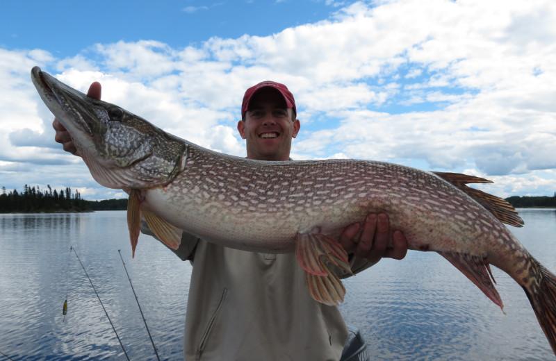 Fishing at Maynard Lake Lodge and Outpost.