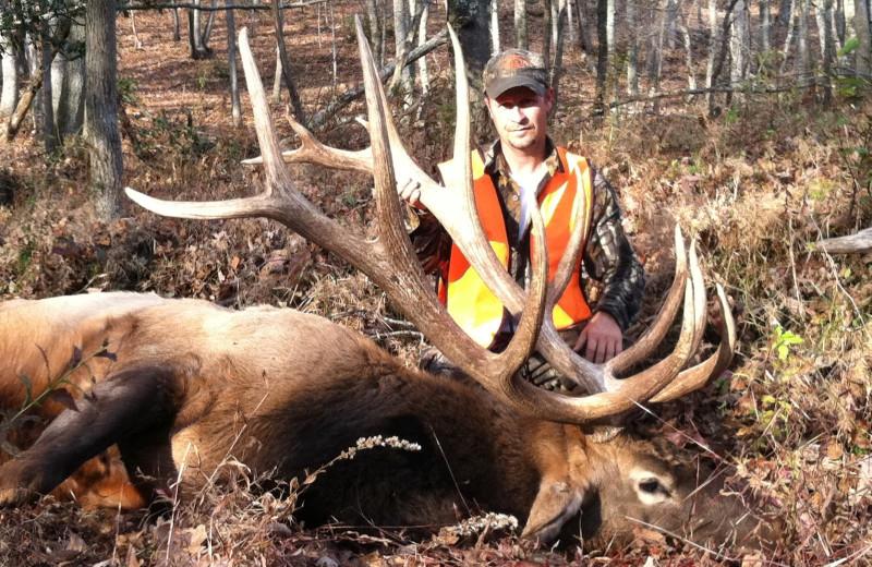 Elk hunting at Caryonah Hunting Lodge.