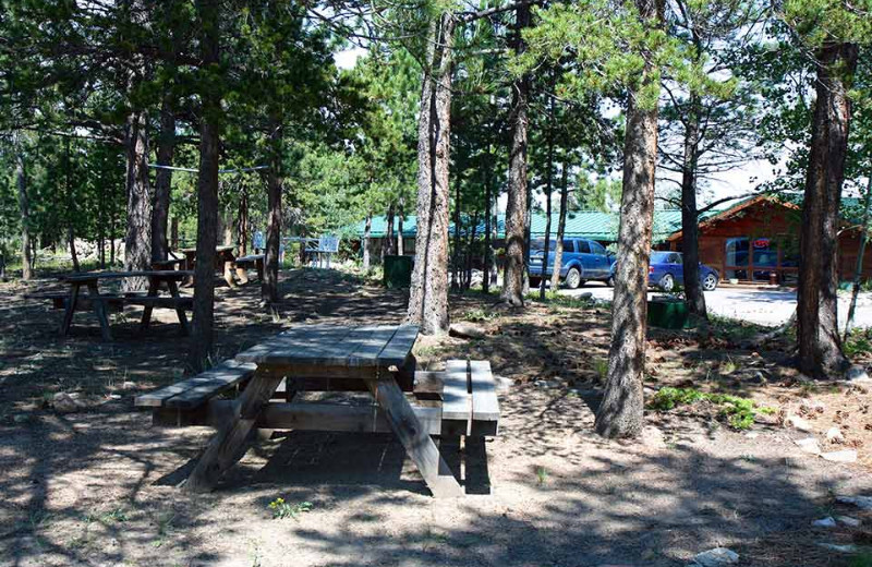 Picnic area at Eldora Lodge.