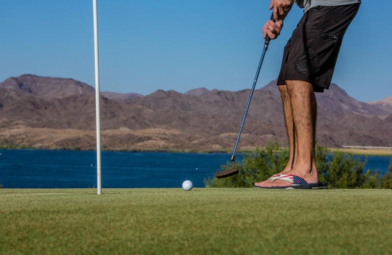 Golf at Havasu Springs Resort.