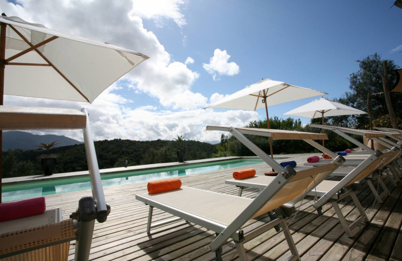 Outdoor pool at Hog Hollow Country Lodge.