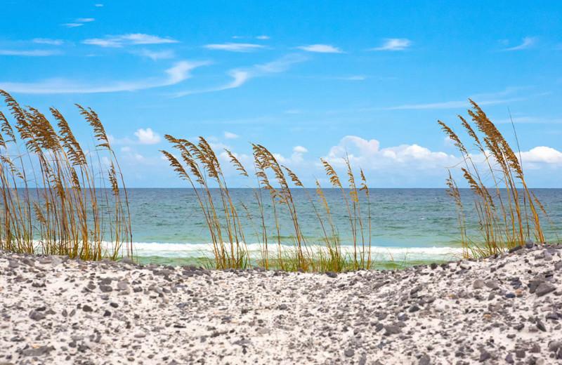 Beach at No Worries Vacation Rentals.