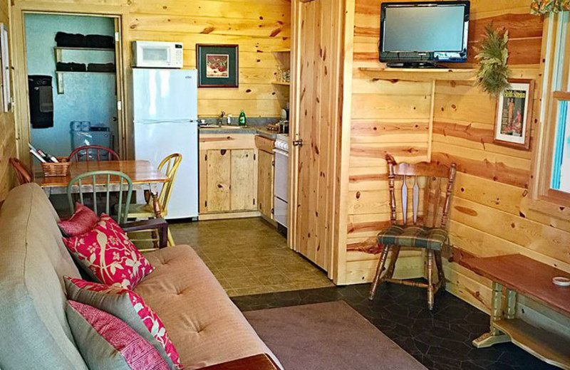 Cabin interior at Silver Mountain Resort and Cabins.