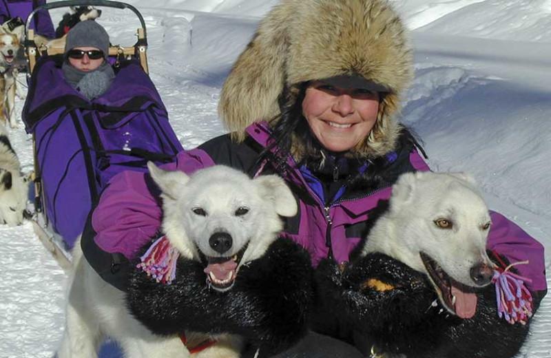 dogsledding tours, Mica Mountain Lodge & log cabins