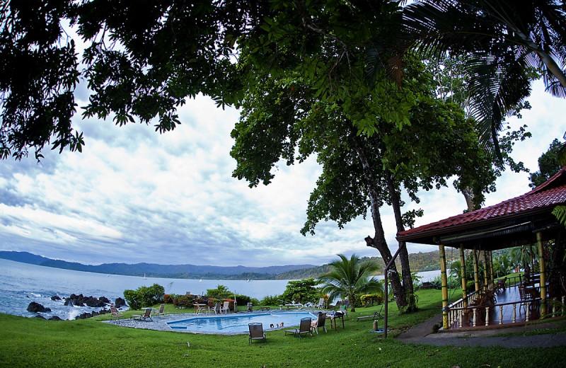 Outdoor pool at Drake Bay Wilderness Resort.