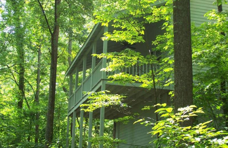 Cabin exterior at Cabins at Highland Falls.