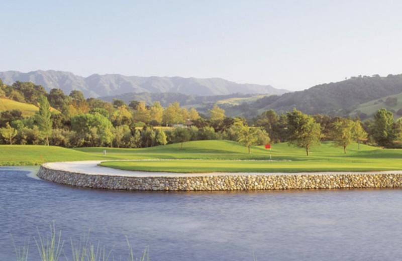Golf Course Nearby Santa Ynez Inn