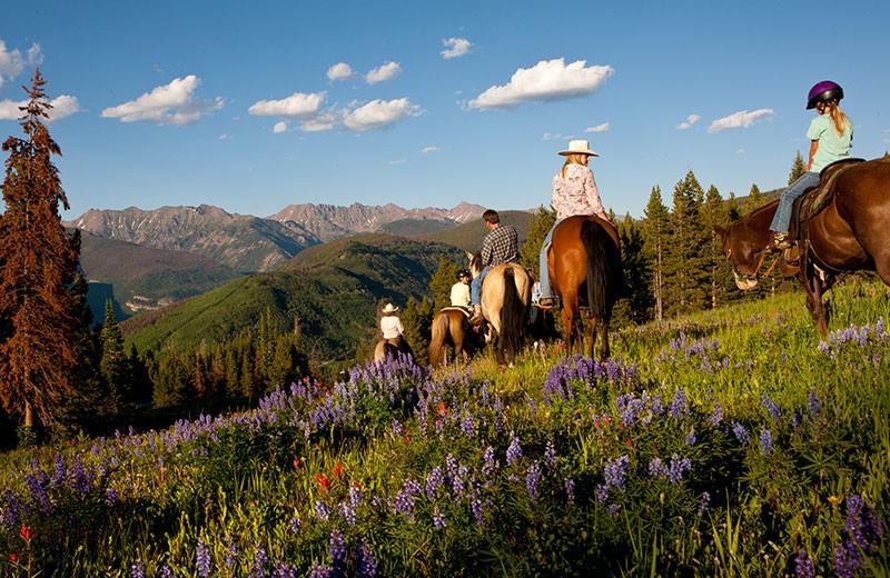 Horseback riding at Grand Lodge on Peak 7.