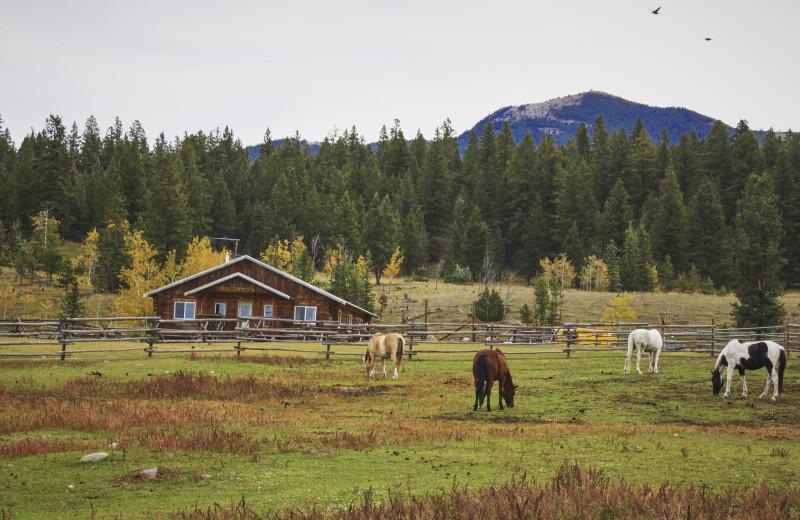 Exterior view of Big Bar Guest Ranch.