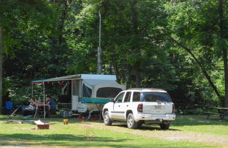 RV park at Yogi at Shangri-La - Jellystone Park.