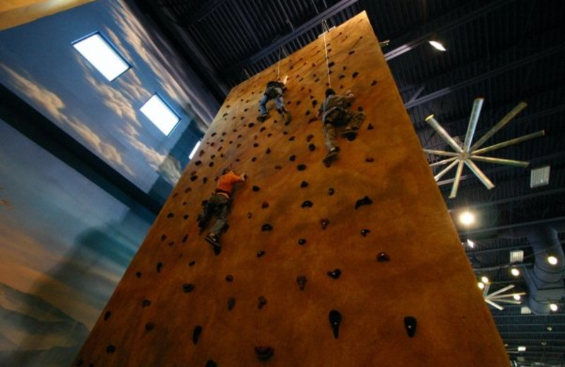 Rock climbing wall at Kalahari Waterpark Resort Convention Center.