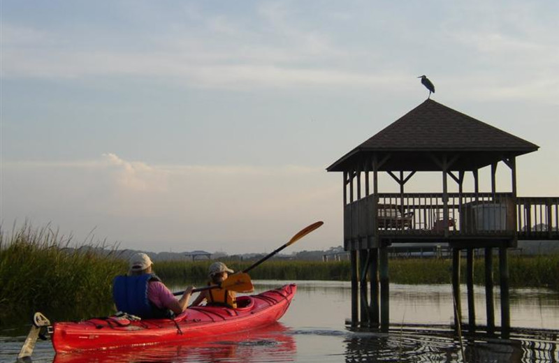 Kayak tours at The King and Prince Beach Resort.