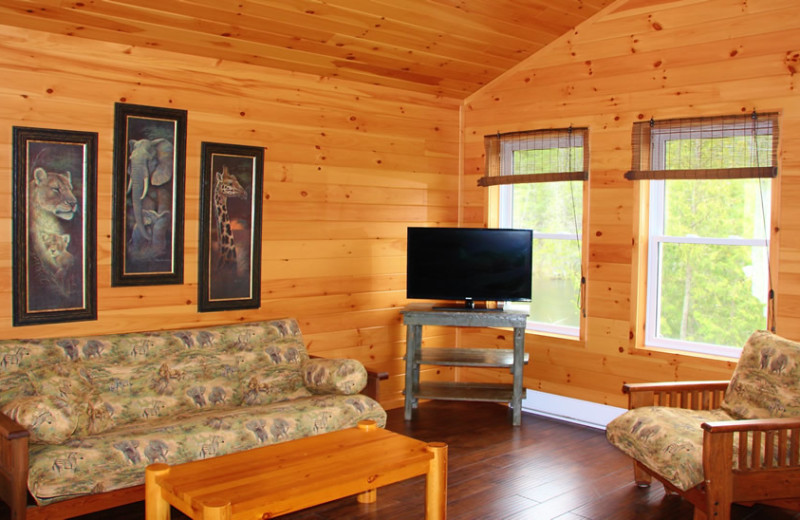 Cabin living room at Fernleigh Lodge.