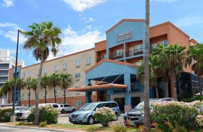Welcome to Comfort Suites South Padre Island