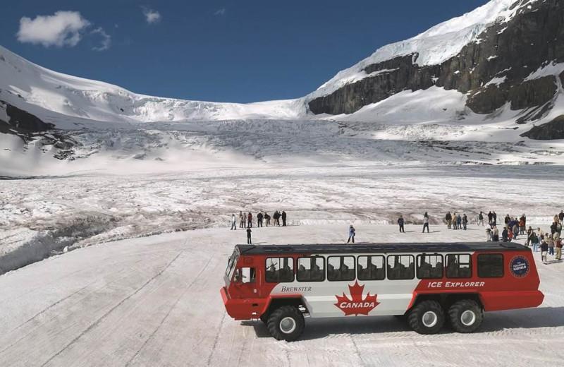 Tours at Mount Robson Inn.