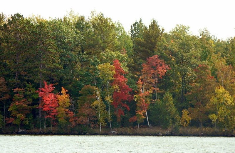 Fall at Northland Lodge.