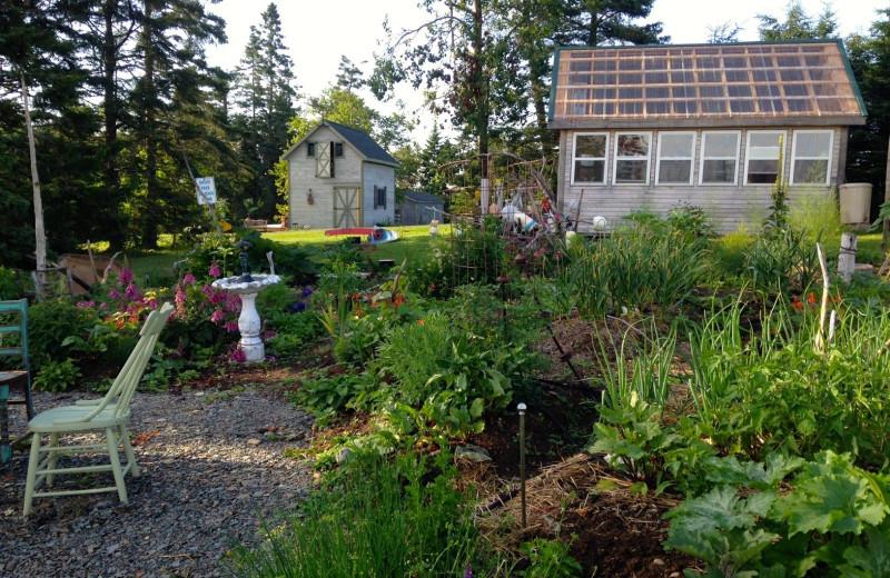 Garden at Rossport Lodging & Retreat.