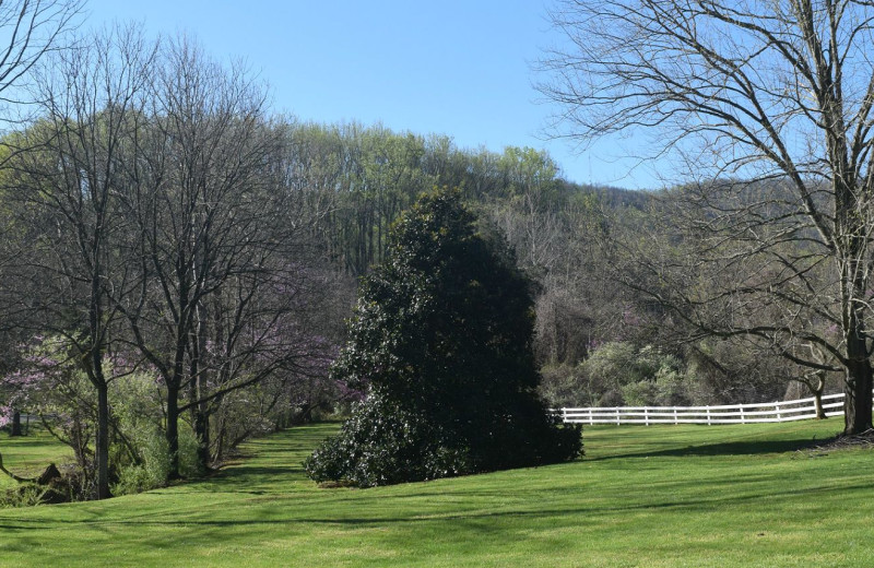 Grounds at Inn at Monticello.