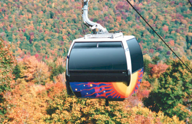 Gondola ride above the canopy at The Mountain Inn.