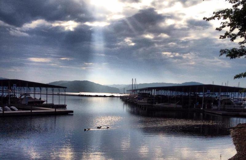 Docks at Fourwinds Resort & Marina.