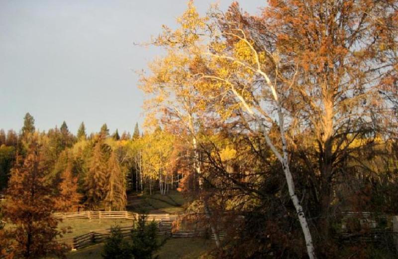 Suite View at Siwash Lake Ranch