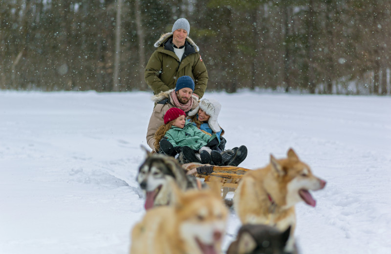 Dog sled at Fairmont Le Chateau Montebello.