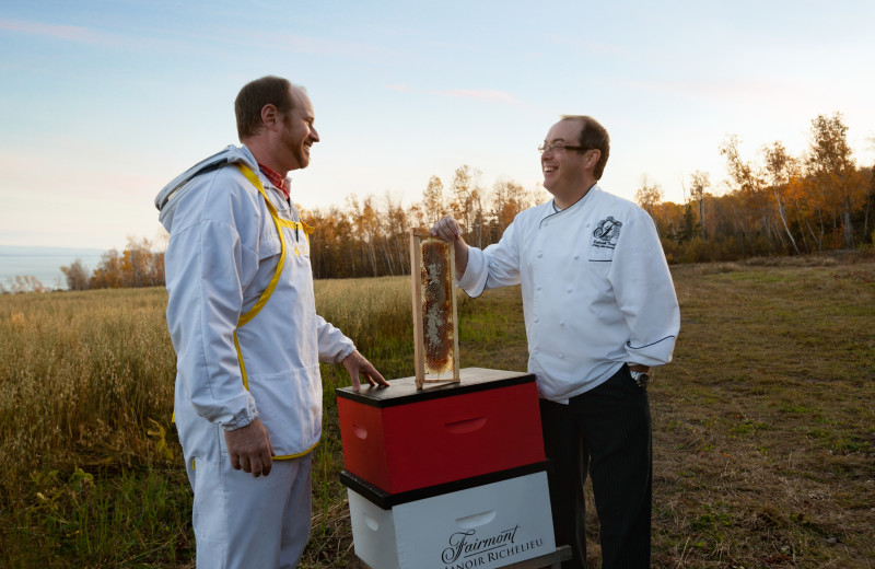 Bee keeping at Fairmont Le Manoir Richelieu.