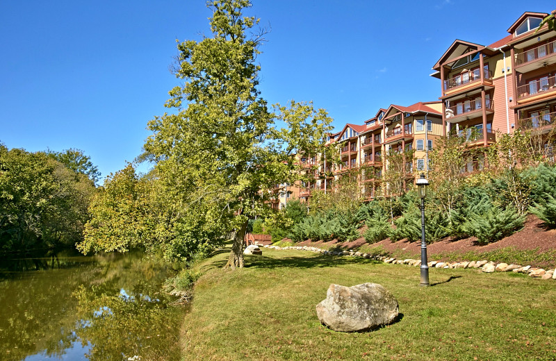 River view at the Appleview River Resort