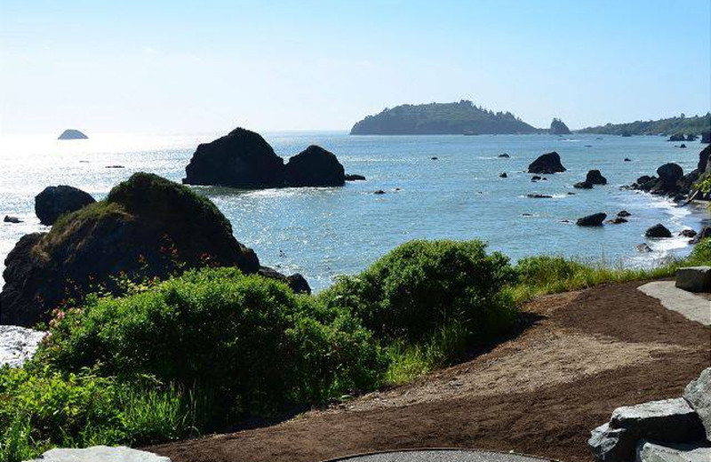 View from Redwood Coast Vacation Rentals.