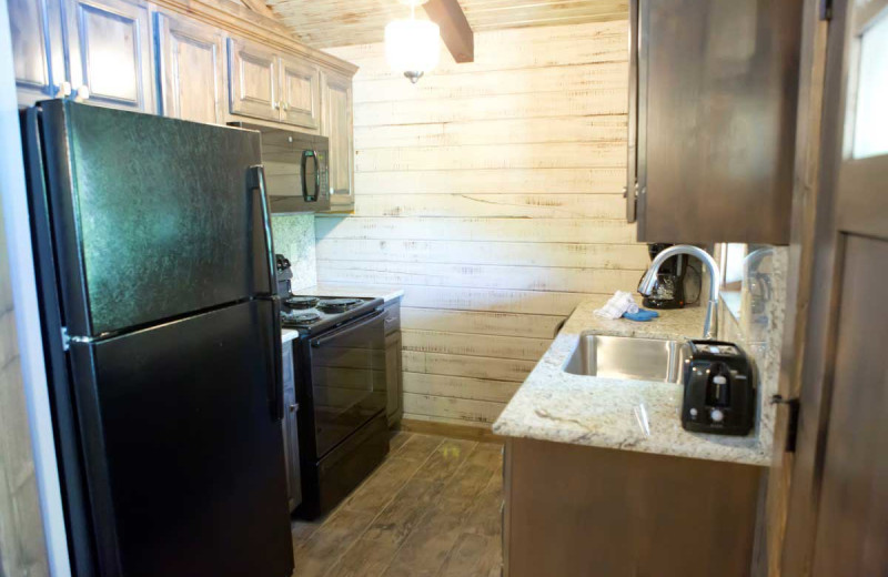 Cabin kitchen at Indian Point.
