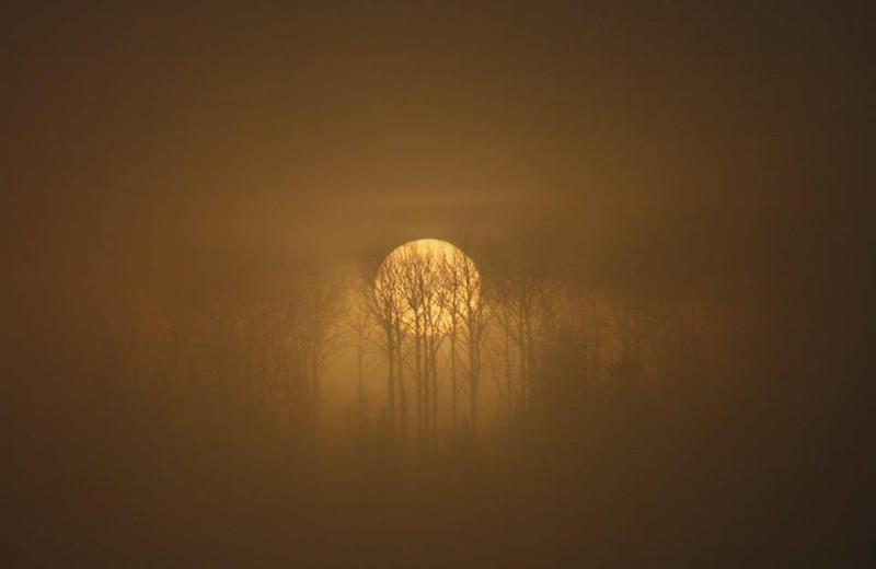 Foggy Morning Sunrise at Tatnall Camp