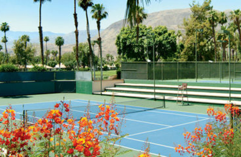Outdoor Tennis Courts at Rancho Las Palmas Resort