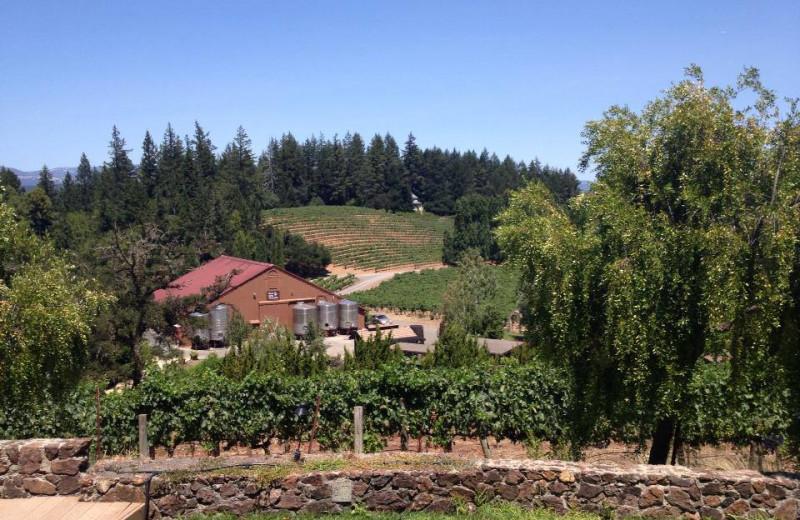 Wineries near Grape Leaf Inn.