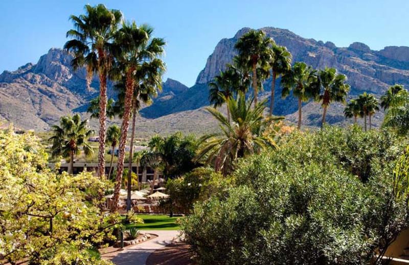 Exterior view of property at Hilton Tucson El Conquistador Golf & Tennis Resort.