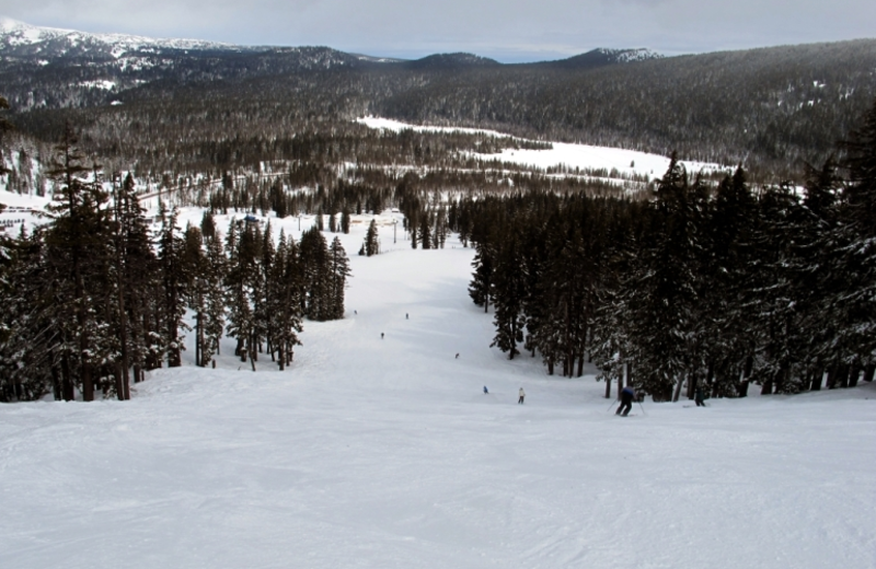 Mt Bachelor is just 30 minutes on paved, plowed backroads. Winter skiing and snowboarding, cross-country ski center plus family fun tubing hill. Open summers too. The lift chair views are spectacular. There are hiking trails, a restaurant, and sometimes still some snow at high elevation.